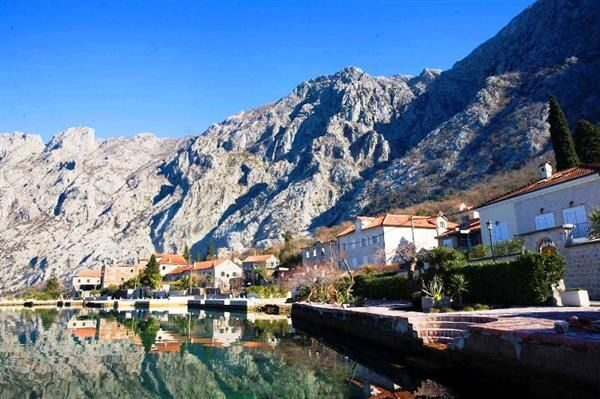 Red feniks недвижимость черногория