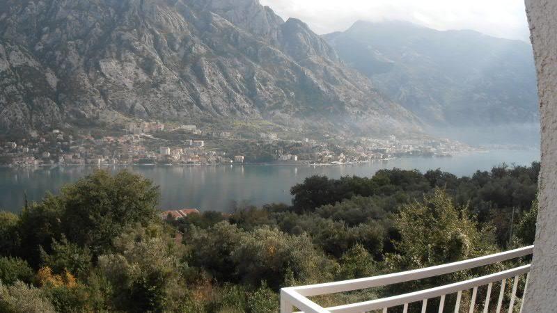 Которская бухта в черногории недвижимость